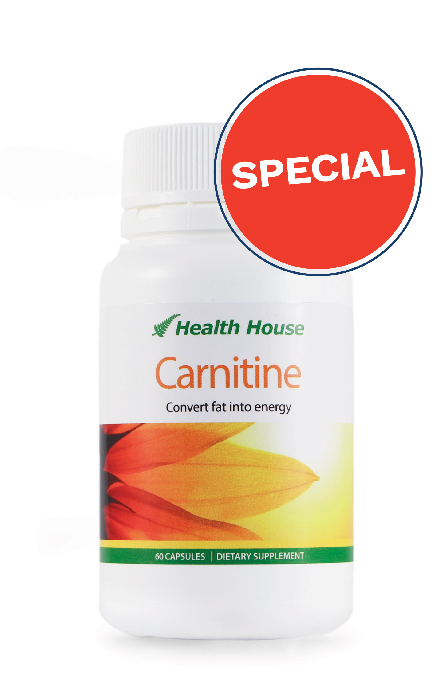 Carnitine helps your body burn calories even while you sleep.