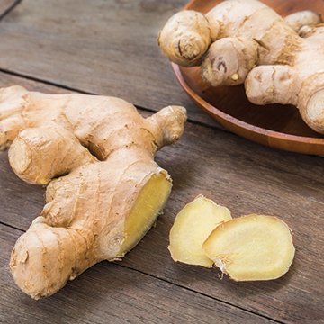 Using ginger for queasy stomachs